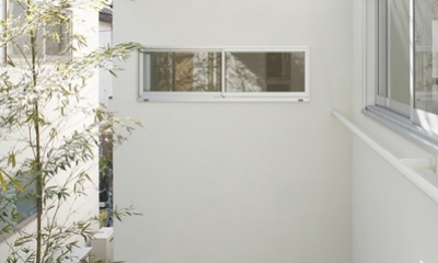 善福寺の家~インナーガーデンの家 (インナーガーデン3)