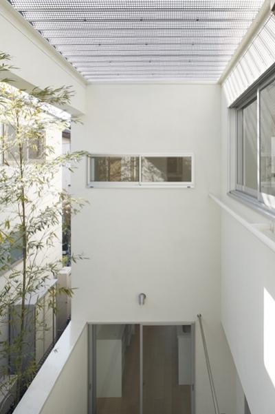 インナーガーデン3 (善福寺の家~インナーガーデンの家)