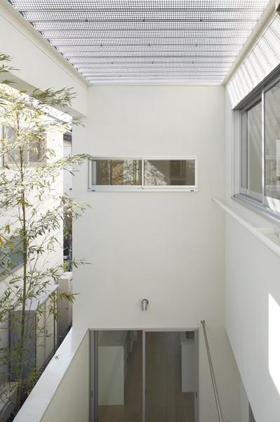 善福寺の家~インナーガーデンの家の部屋 インナーガーデン3