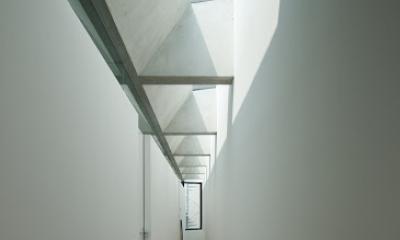 SBD25 (廊下)