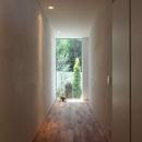 シンプルラグジュアリー 碧い屋根の家の写真 廊下