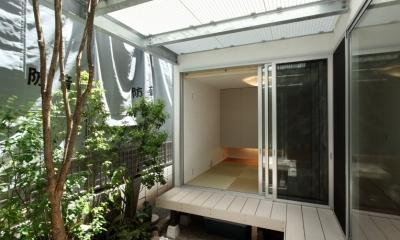 シンプルラグジュアリー 碧い屋根の家 (中庭)