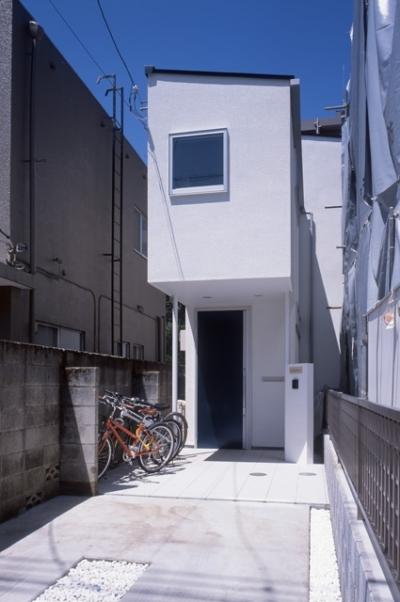 シンプルラグジュアリー 碧い屋根の家 (外観)