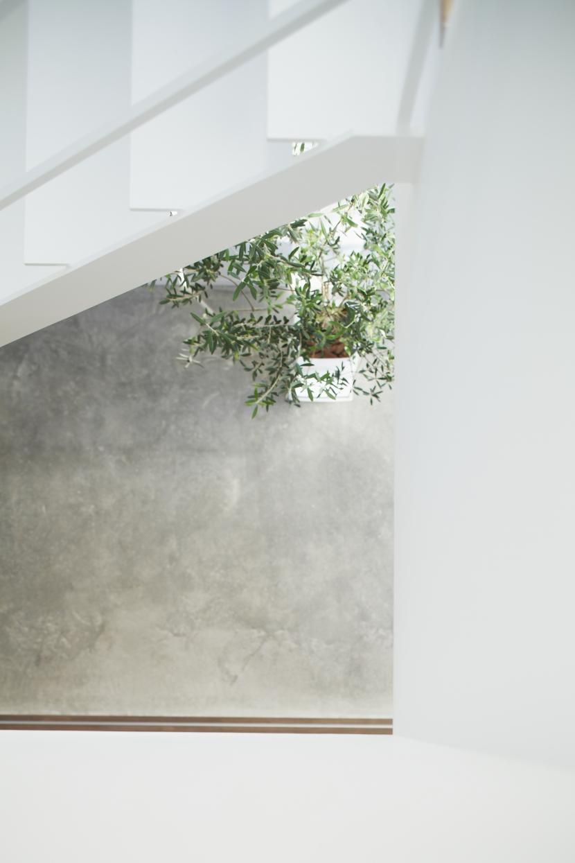 白い原石の家 (白い原石の家 吹き抜け)