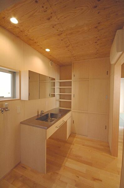 地下の音楽スタジオのある家の部屋 ステンレスの洗面台