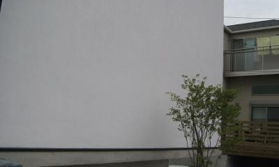 斜め窓の家 OUCHI-06 (アプローチ)