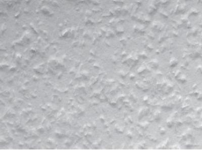廊下に使われた紙の壁紙 (ロフトでつながる大屋根の家)
