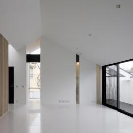 愛犬と暮らす家 地下室のあるOUCHI-13 (縦スリット窓のあるリビング)