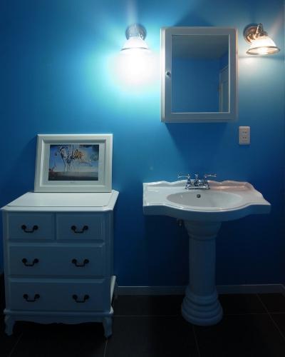 パリのアパルトマンの写真 洗面所