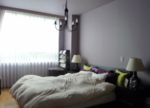 グリーン&洋書LIKEな空間 (ベッドルーム)