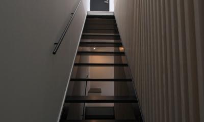 愛犬と暮らす家 地下室のあるOUCHI-13 (2階リビングへの階段)