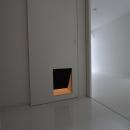 愛犬と暮らす家 地下室のあるOUCHI-13の写真 犬のためのドア