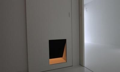 愛犬と暮らす家 地下室のあるOUCHI-13 (犬のためのドア)