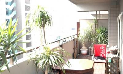 明るい浴室を作ったマンションリノベ (ウッドデッキのあるバルコニー)