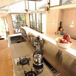 空とともに暮らす家 (ステンレス製のキッチン)