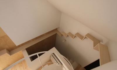 ネコと犬と暮らす家・二世帯住宅OUCHI-14 (人の階段・猫の階段)