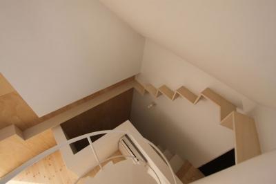 人の階段・猫の階段 (ネコと犬と暮らす家・二世帯住宅OUCHI-14)