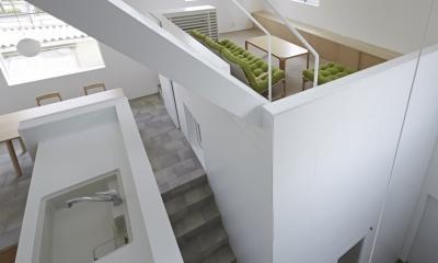 曙橋の家 / 都心の小さな家 (玄関とLDKを俯瞰する)