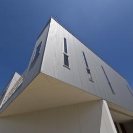 宿郷の家 (外観北西面見上げ)