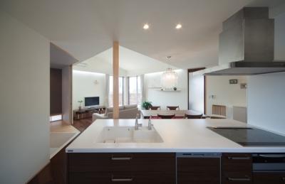 赤崎の家 (キッチン)