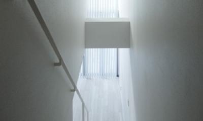 神楽坂南町ハウス (階段)