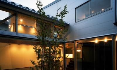 【光をつなぐ家】 リビングを陽光が貫通 北庭へと光をつなぐ