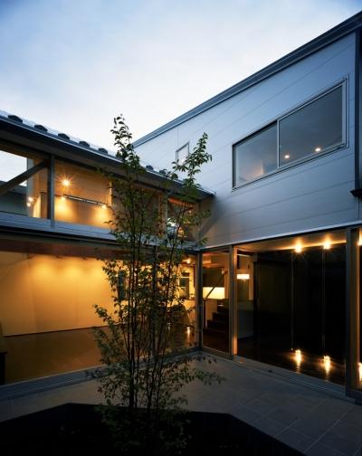 中庭 (【光をつなぐ家】 リビングを陽光が貫通 北庭へと光をつなぐ)