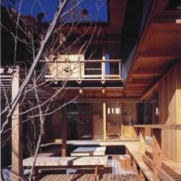 北鎌倉の家 (中庭)