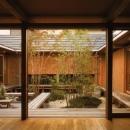 茶の間から眺める中庭