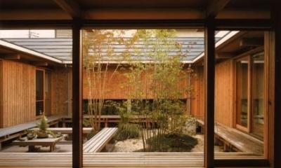 松戸の家 (茶の間から眺める中庭)