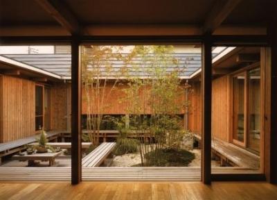 茶の間から眺める中庭 (松戸の家)