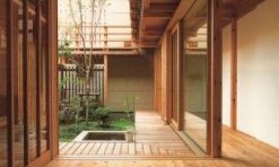 玄関|杉並の家