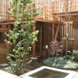 杉並の家 (中庭)