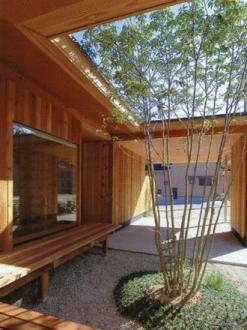 三原の家の写真 中庭-日中
