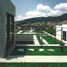 空の家 (屋上庭園)
