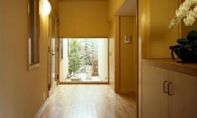 平屋 和風モダンの家  築60年の一部を残した住宅の建て替え (玄関/正面に坪庭が見える)