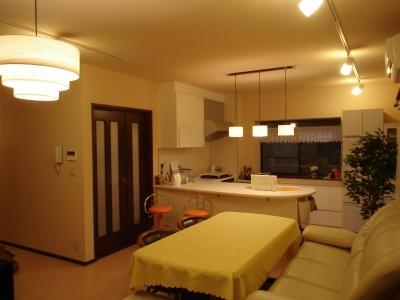 犬と共に暮らす家  室内に光を届けるリノベーション (リビング/アイランドキッチン)