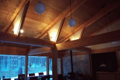 リビング-天井 (蓼科の家)