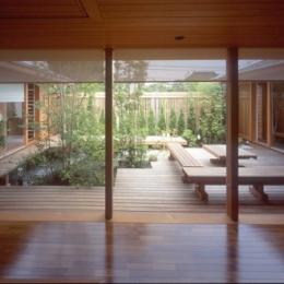 室内から眺めた中庭