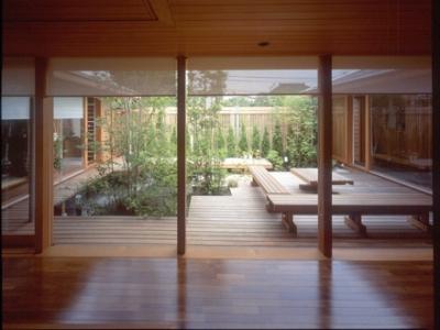 室内から眺めた中庭 (船堀の家)