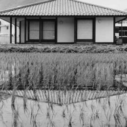辰野の家 (東側外観)
