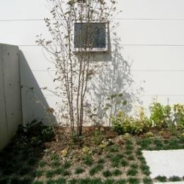 登美ケ丘の家 (庭)
