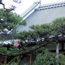 押熊の家 (屋根)