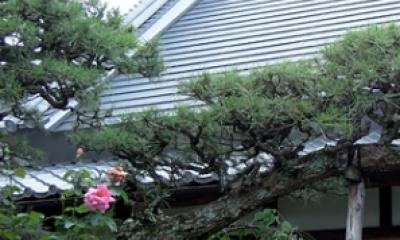 屋根|押熊の家