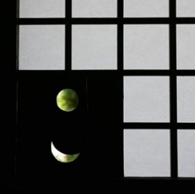 北田原の家 (引き戸口)