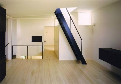 W邸 (屋上へ繋がる梯子状の階段)