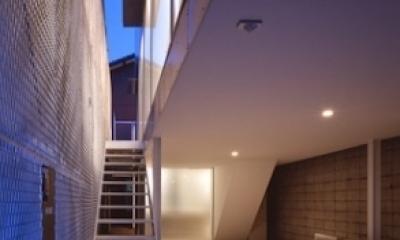 エントランスへの階段 ピロティ(撮影:T.KURUMATA)|house H