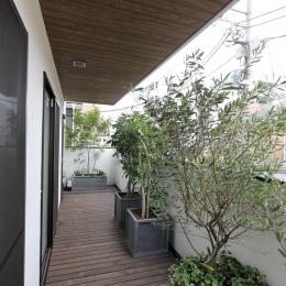 中庭のある家(1) (緑があふれるバルコニー)