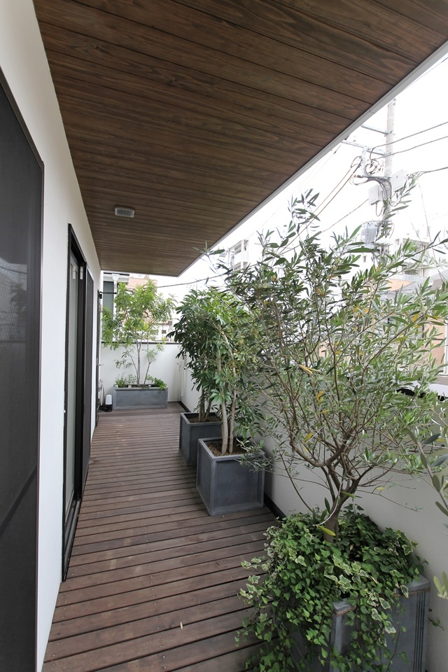中庭のある家(1)の写真 緑があふれるバルコニー