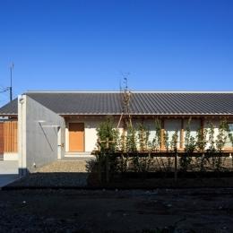 素直な家 (外観1)